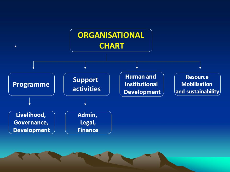 ORGANISATIONAL CHART Support Programme activities Human and