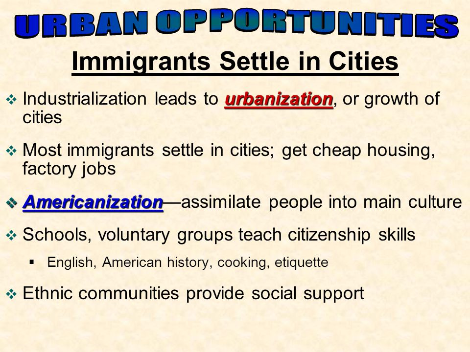 Immigrants Settle in Cities