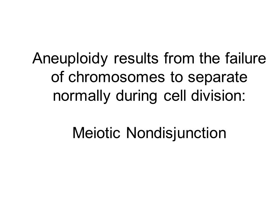 Aneuploidy results from the failure of chromosomes to separate normally during cell division: Meiotic Nondisjunction