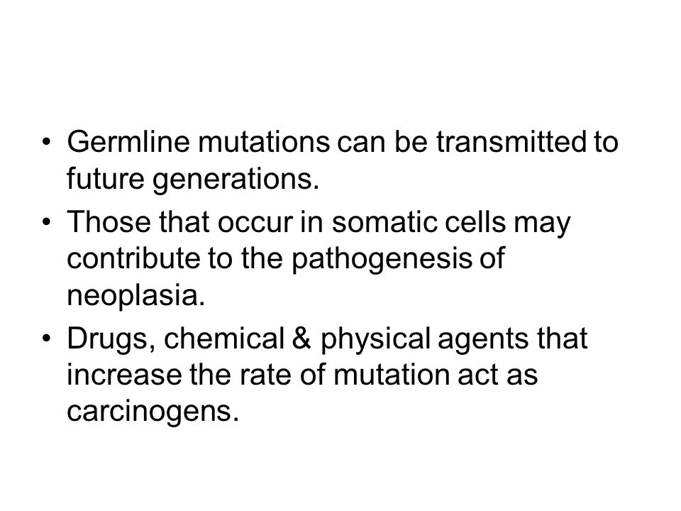 Germline mutations can be transmitted to future generations.