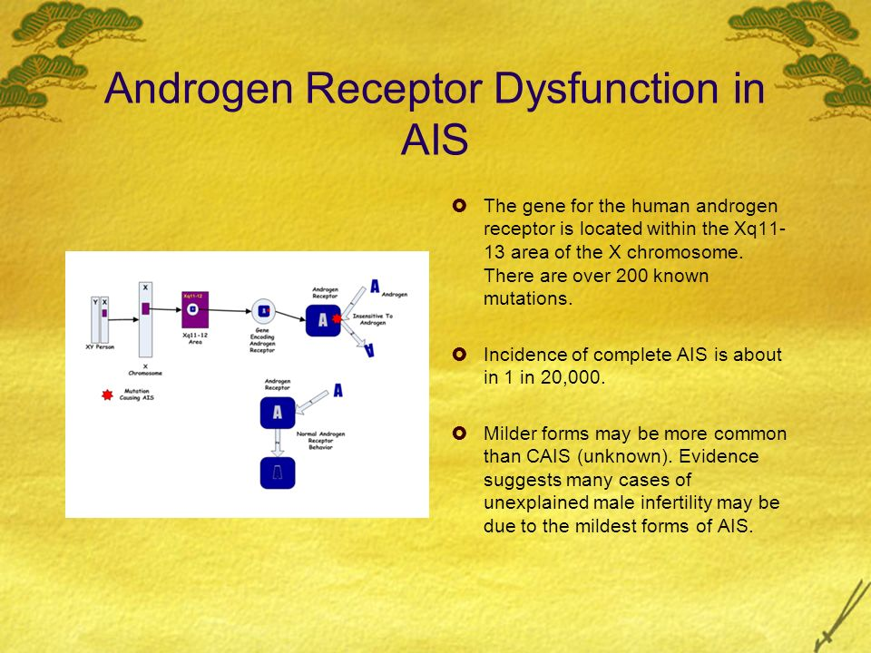 Androgen Receptor Dysfunction in AIS