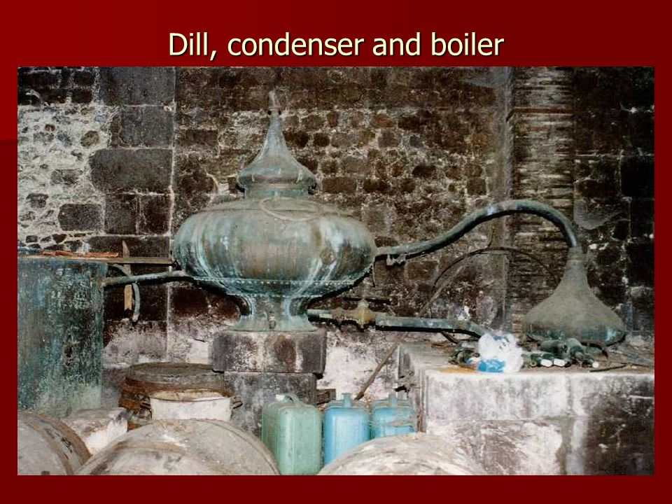 Dill, condenser and boiler