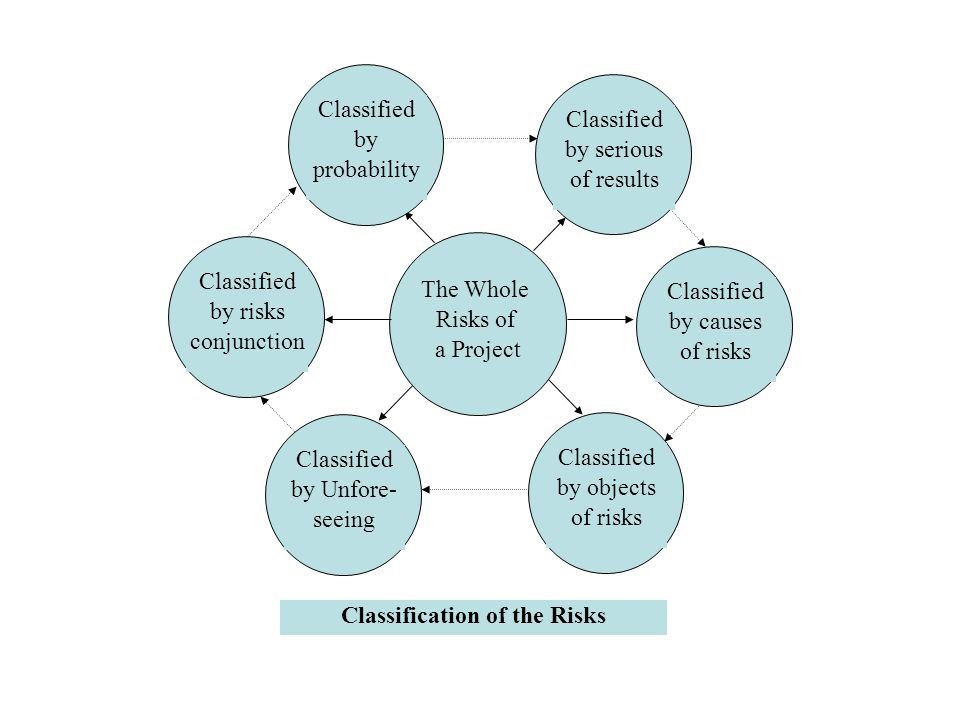 Classification of the Risks