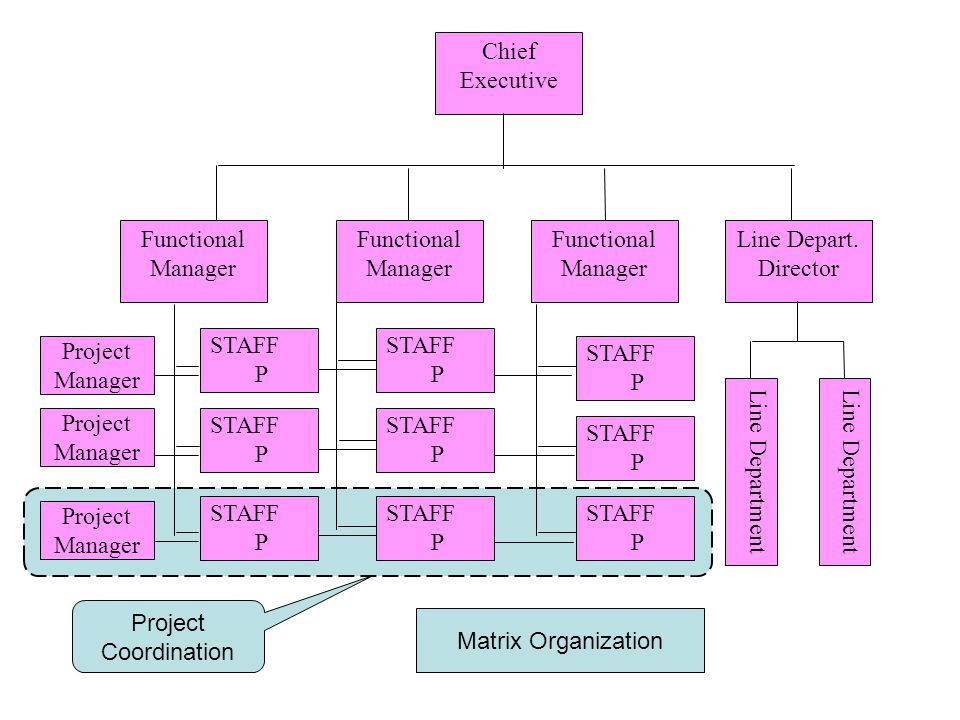 Chief Executive Line Department. Line Depart. Director. Functional. Manager. Project Manager. STAFF.