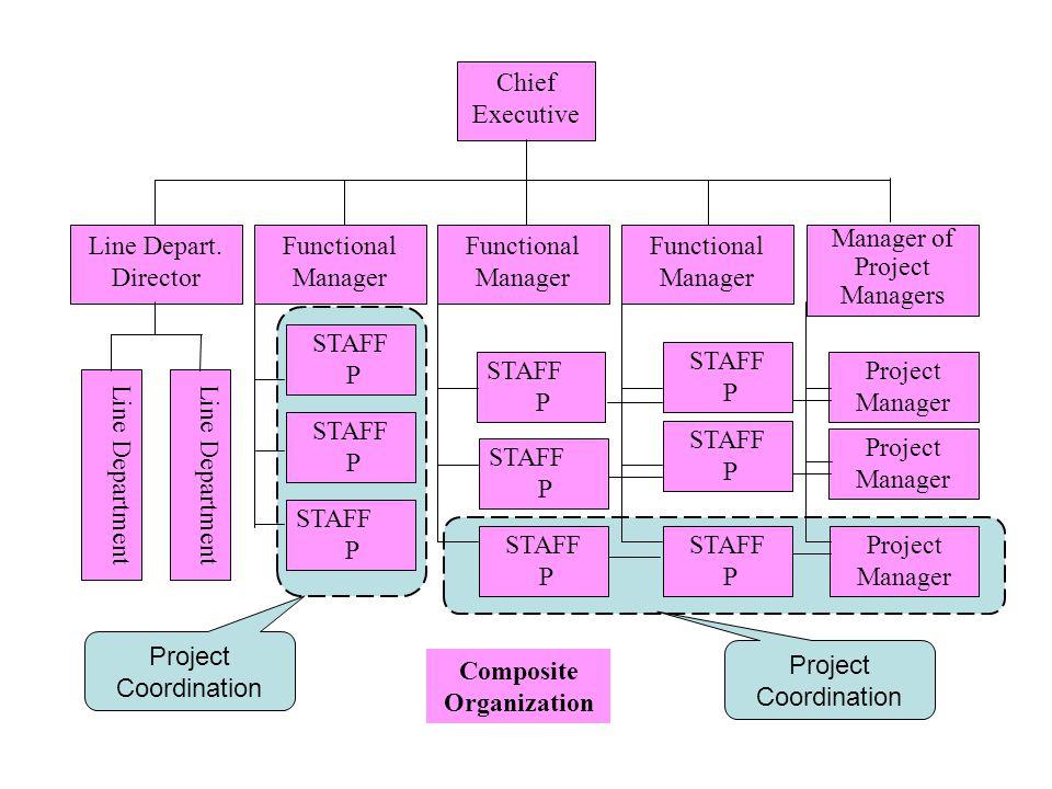 Composite Organization