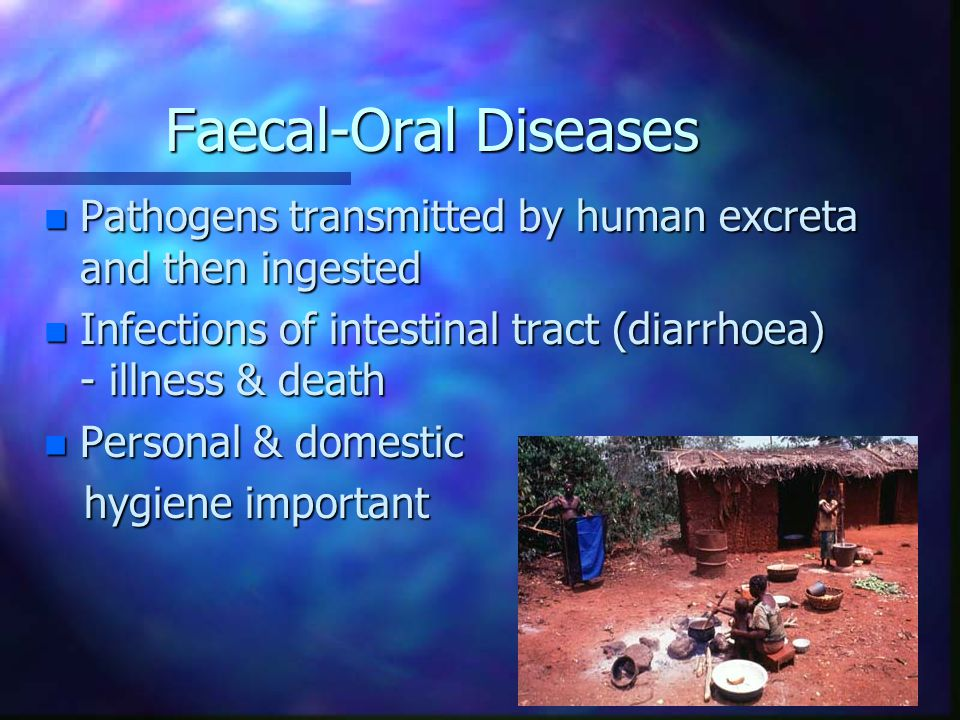 Faecal-Oral Diseases Pathogens transmitted by human excreta and then ingested. Infections of intestinal tract (diarrhoea) - illness & death.