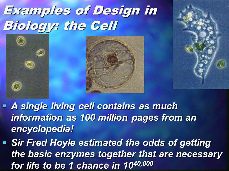 Examples of Design in Biology: the Cell
