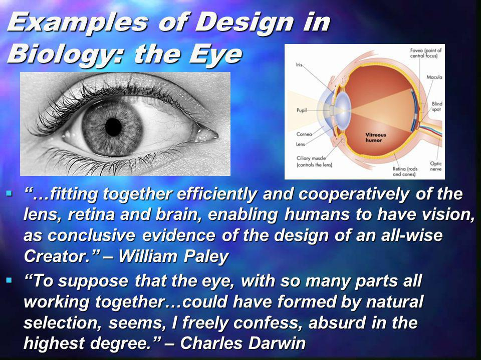 Examples of Design in Biology: the Eye