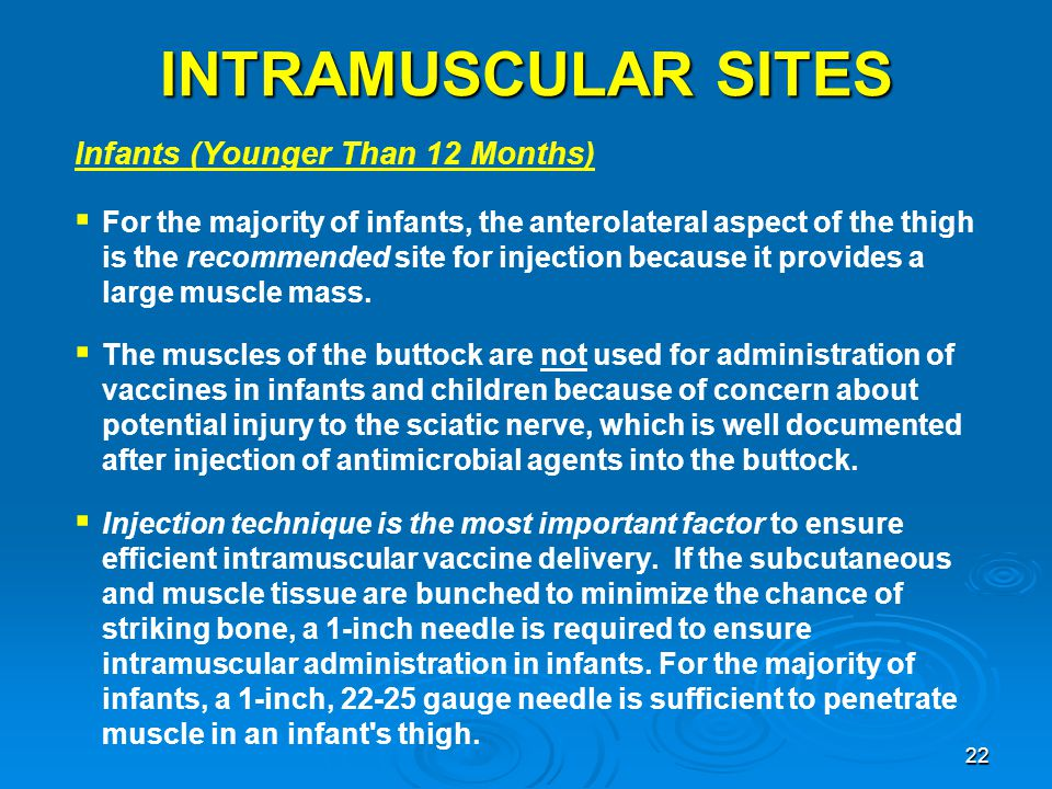 INTRAMUSCULAR SITES Infants (Younger Than 12 Months)