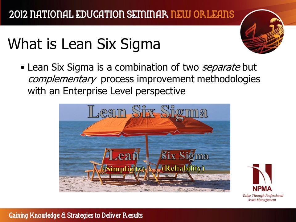 Lean Six Sigma What is Lean Six Sigma Lean Six Sigma