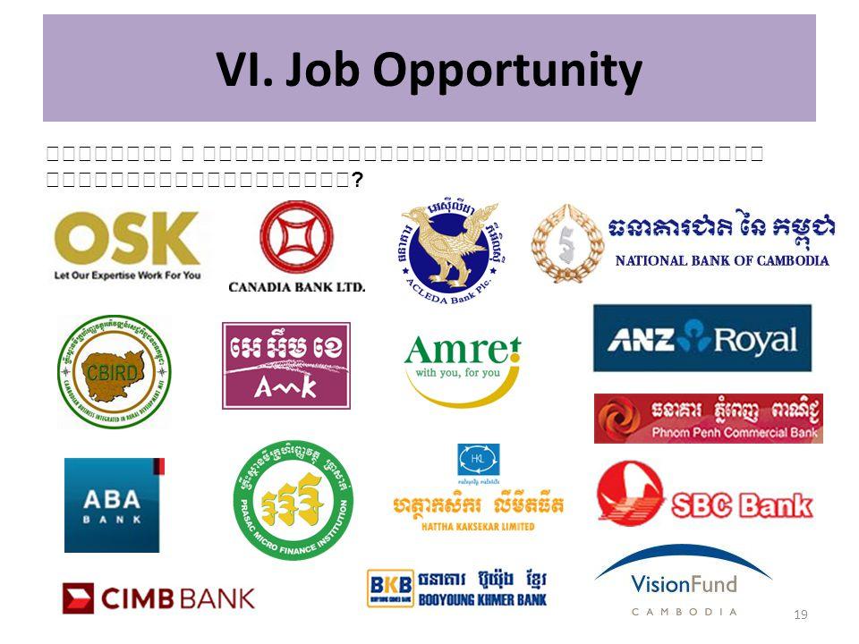 VI. Job Opportunity តើធនាគារ ឬ គ្រឹះស្ថានមីក្រូហិរញ្ញវត្ថុណាមួយដែលអ្នកចង់ធ្វើការជាមួយ