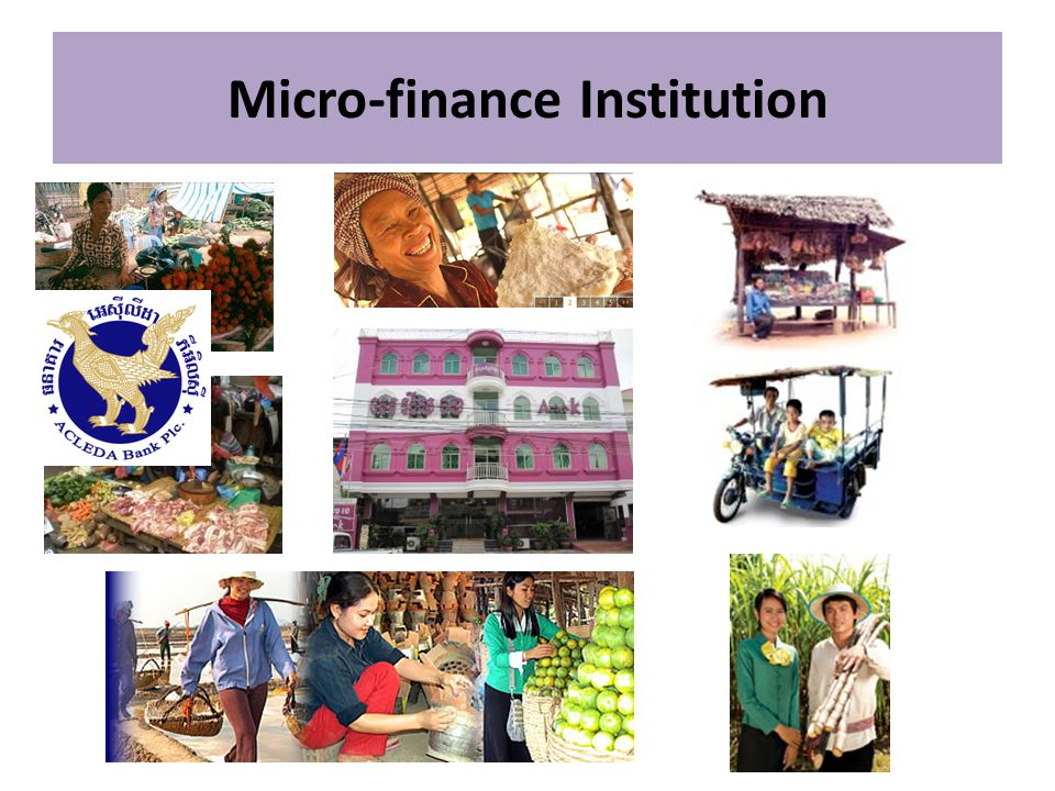 Micro-finance Institution