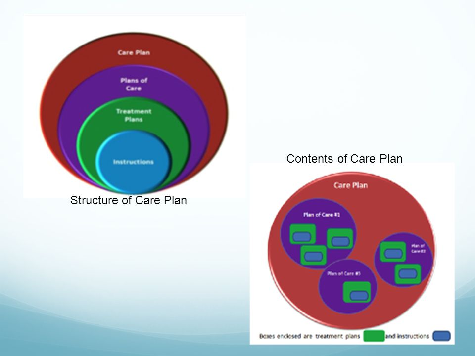 Contents of Care Plan Structure of Care Plan