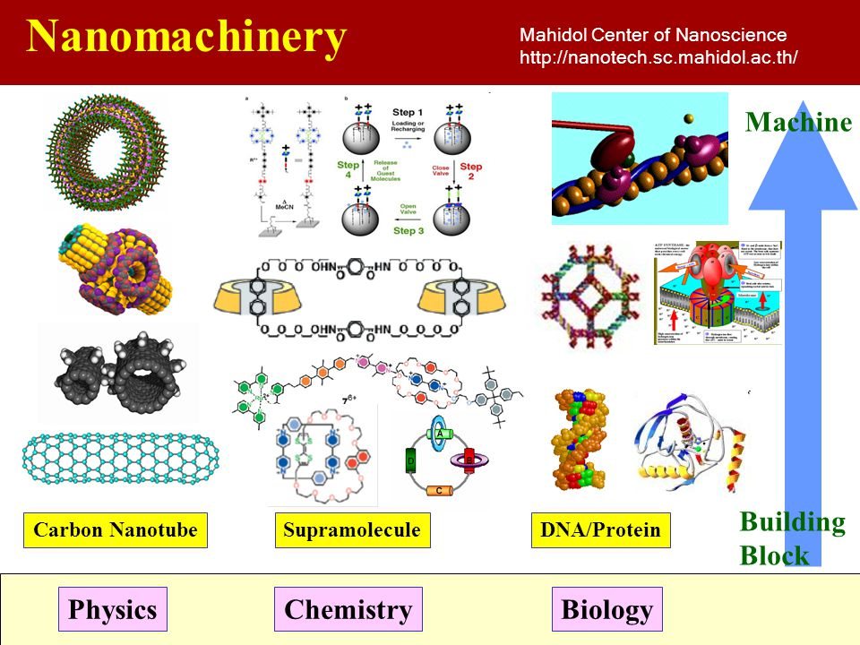 Nanomachinery Machine Building Block Physics Chemistry Biology