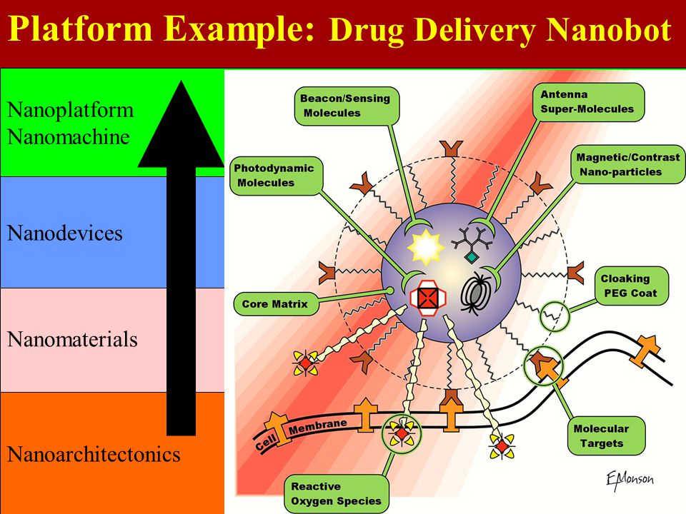 Platform Example: Drug Delivery Nanobot