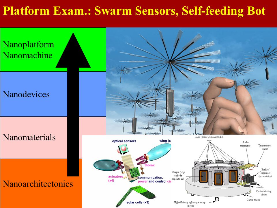 Platform Exam.: Swarm Sensors, Self-feeding Bot