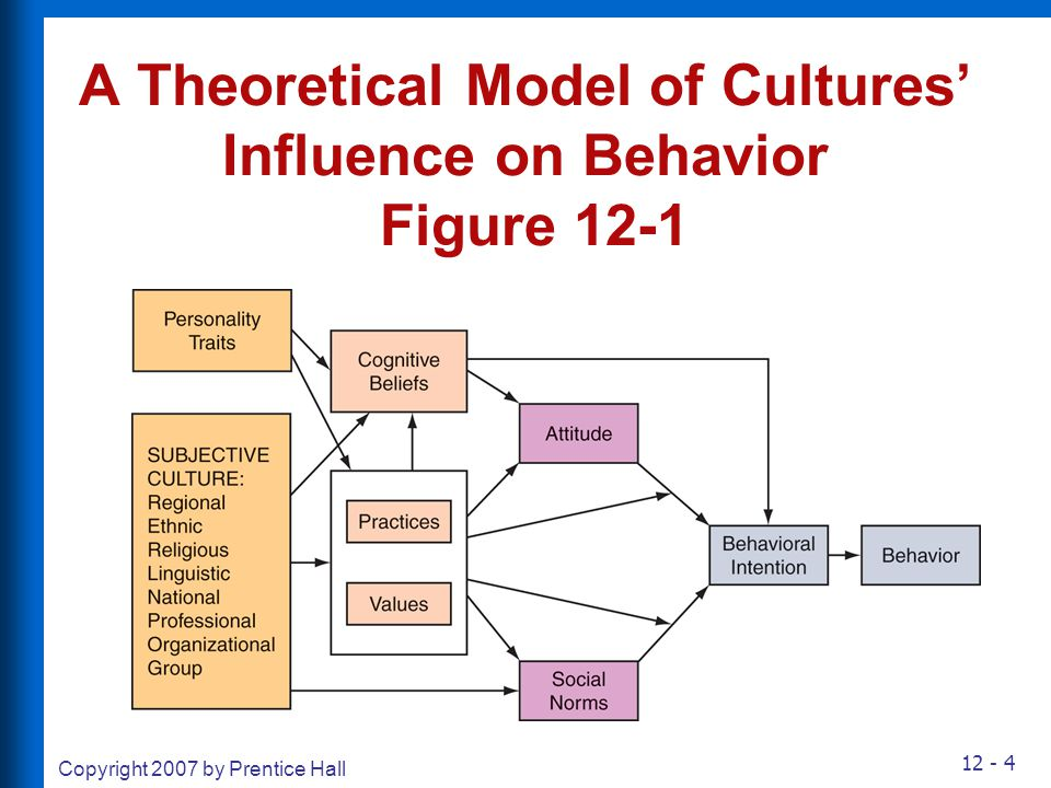 A Theoretical Model of Cultures' Influence on Behavior Figure 12-1