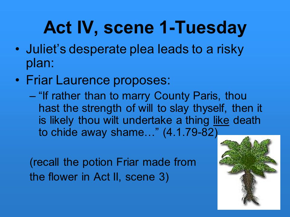 Act IV, scene 1-Tuesday Juliet's desperate plea leads to a risky plan: