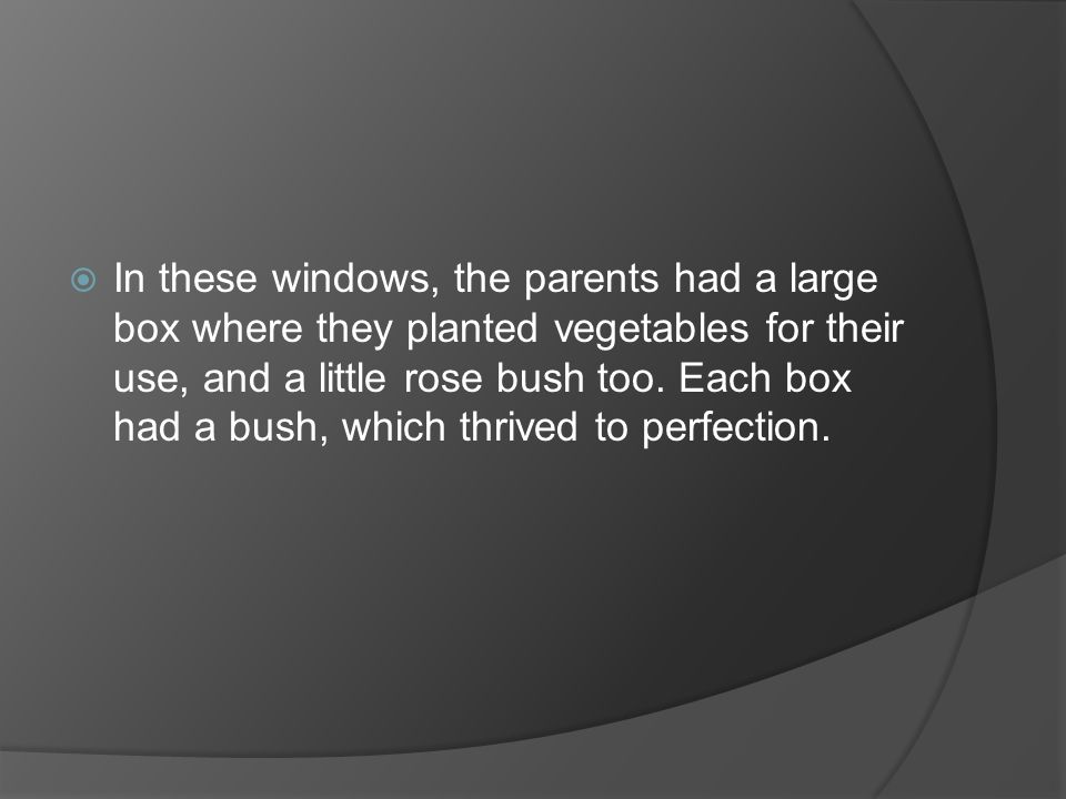 In these windows, the parents had a large box where they planted vegetables for their use, and a little rose bush too.
