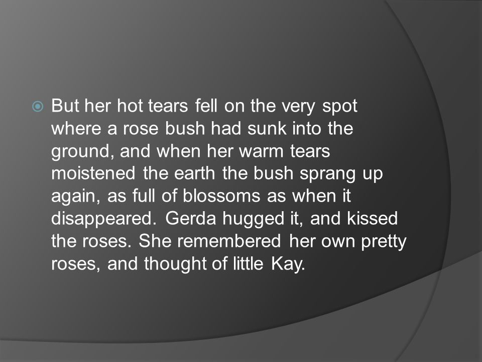 But her hot tears fell on the very spot where a rose bush had sunk into the ground, and when her warm tears moistened the earth the bush sprang up again, as full of blossoms as when it disappeared.