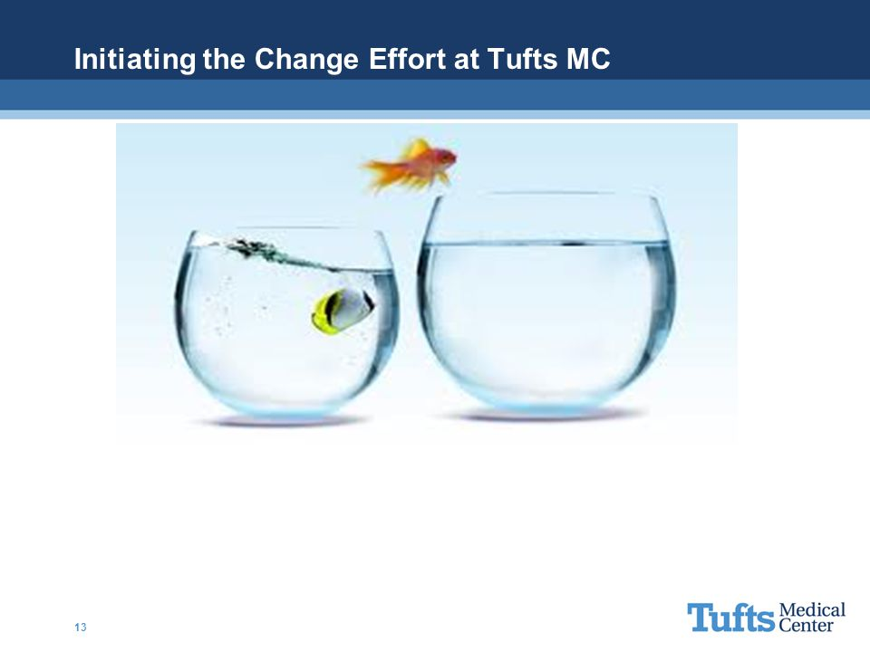 Initiating the Change Effort at Tufts MC