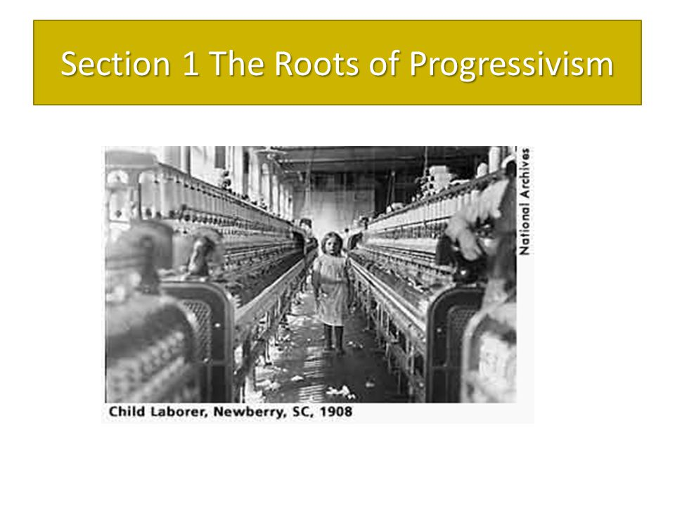 Section 1 The Roots of Progressivism