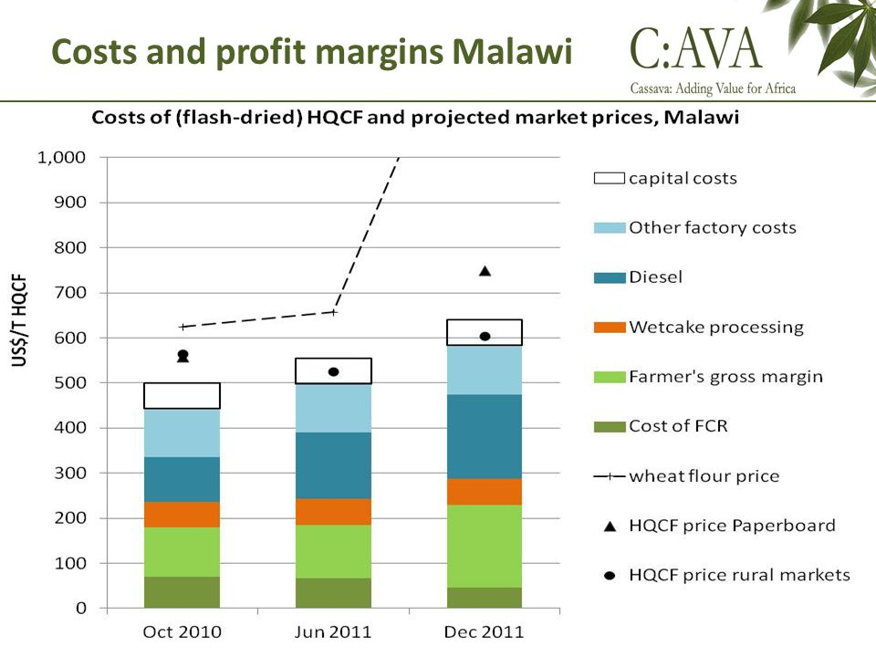 Costs and profit margins Malawi