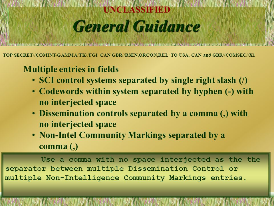 General Guidance Multiple entries in fields