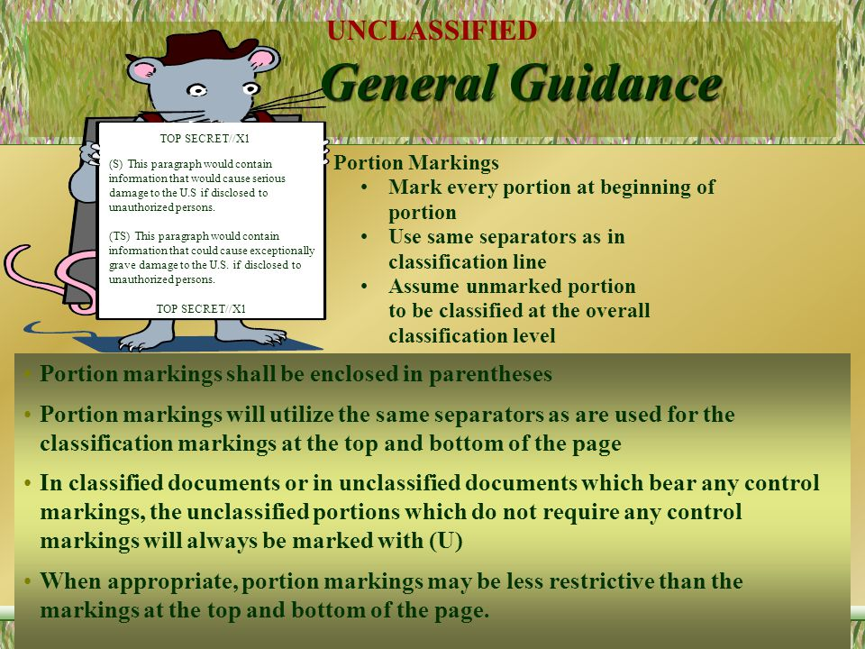 General Guidance Portion markings shall be enclosed in parentheses