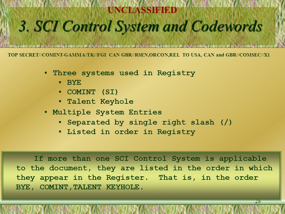 3. SCI Control System and Codewords