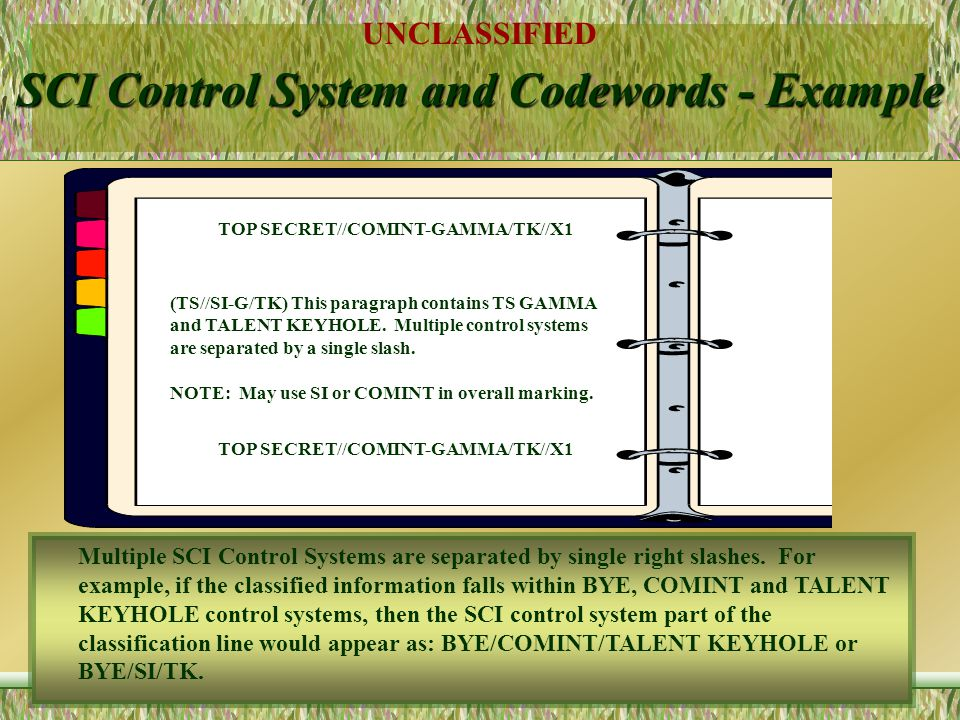 SCI Control System and Codewords - Example