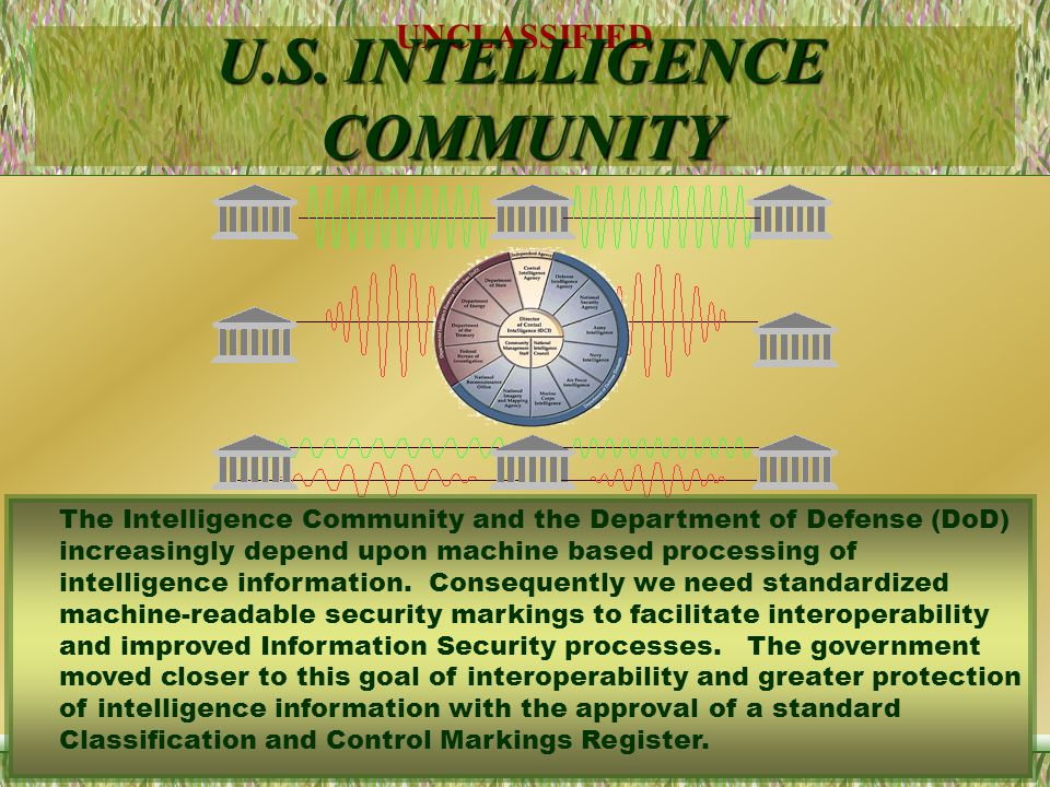 U.S. INTELLIGENCE COMMUNITY