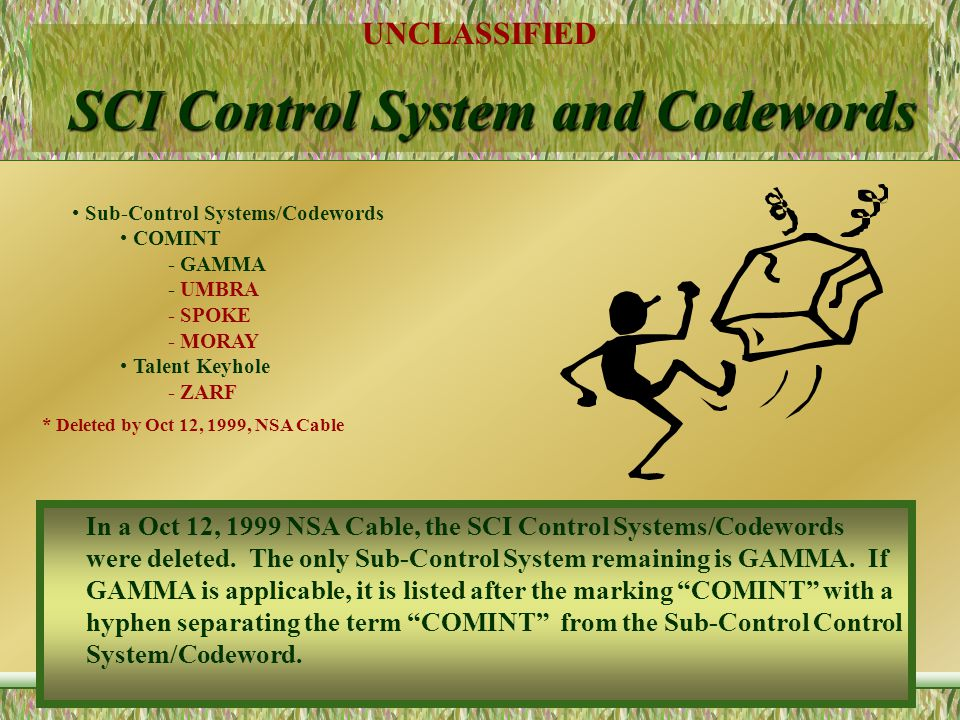 SCI Control System and Codewords
