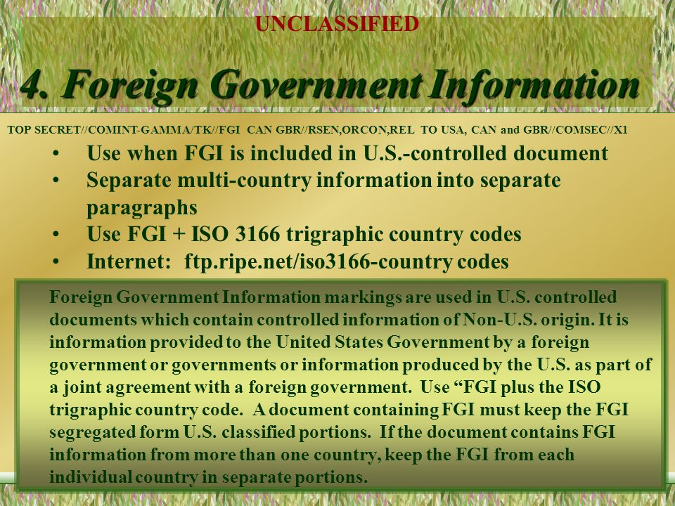 4. Foreign Government Information