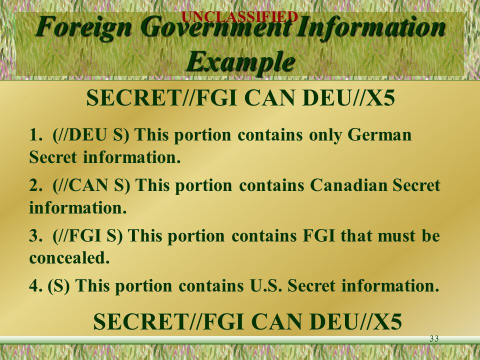 Foreign Government Information Example