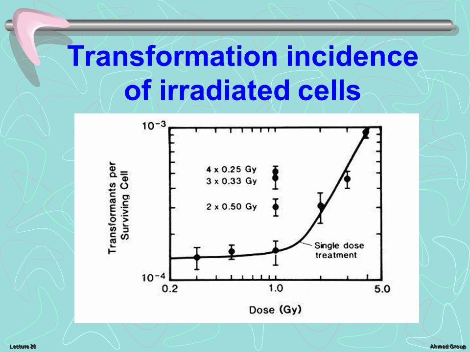 Transformation incidence of irradiated cells