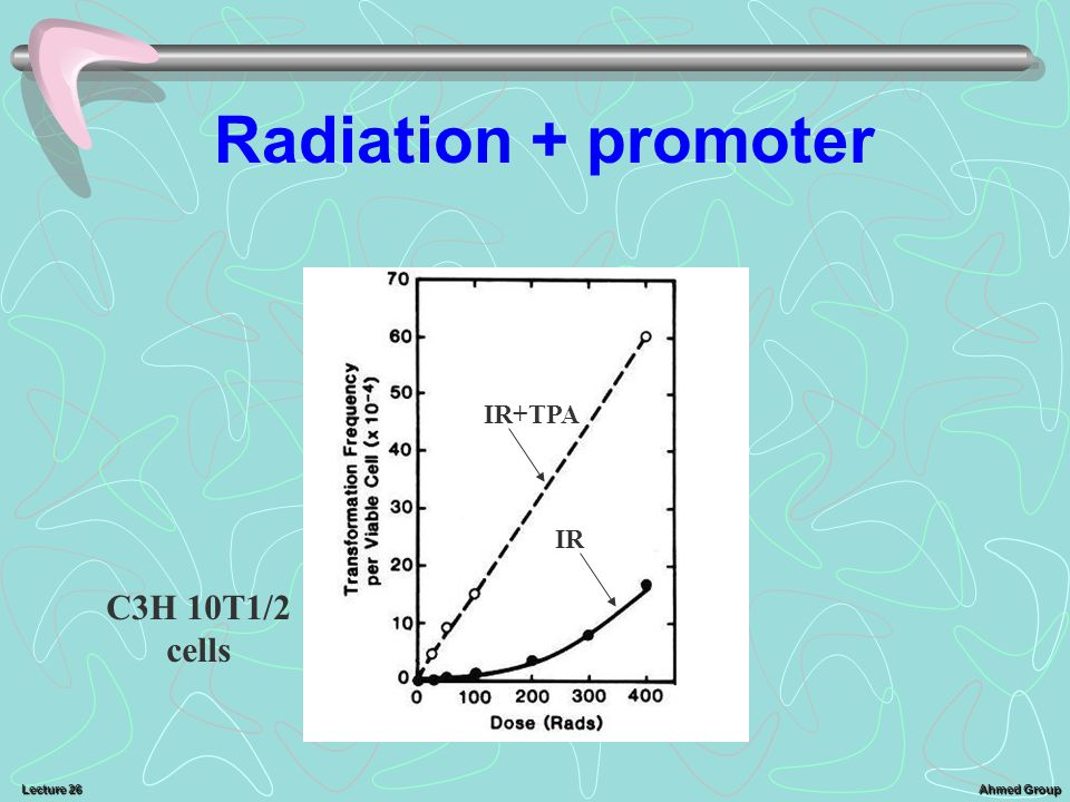 Radiation + promoter IR+TPA IR C3H 10T1/2 cells