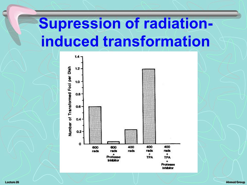 Supression of radiation-induced transformation