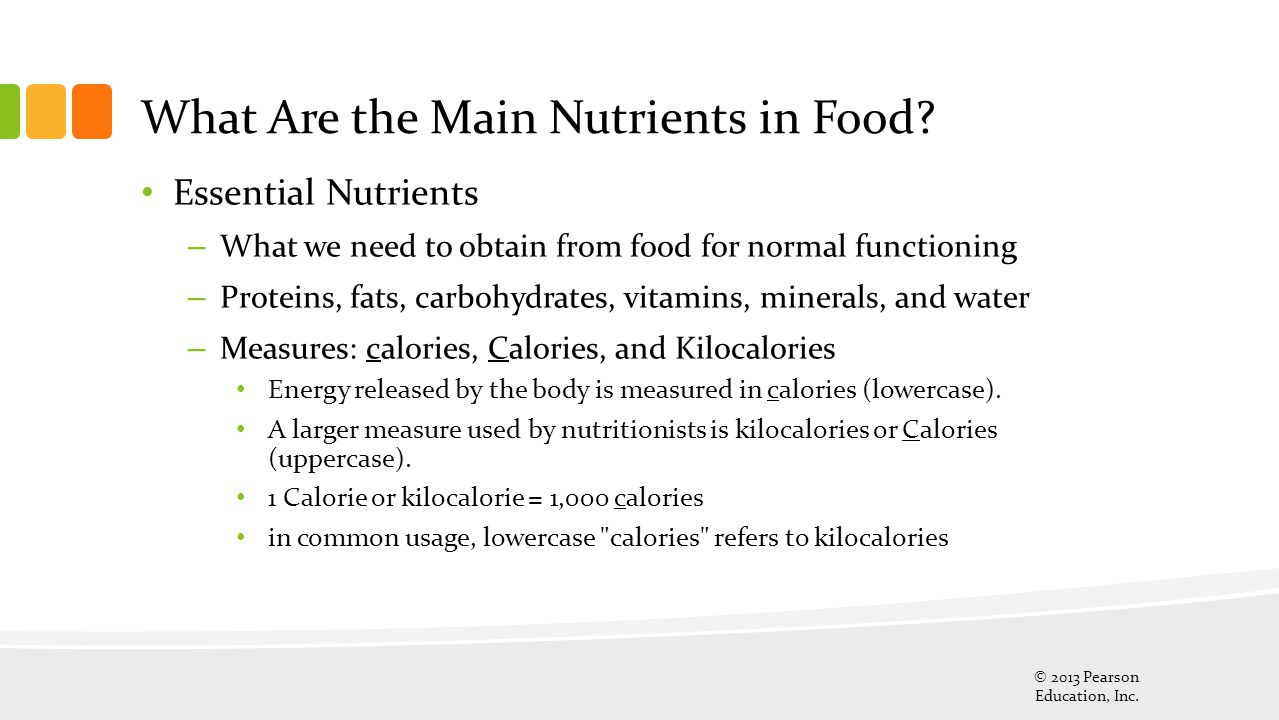 What Are the Main Nutrients in Food