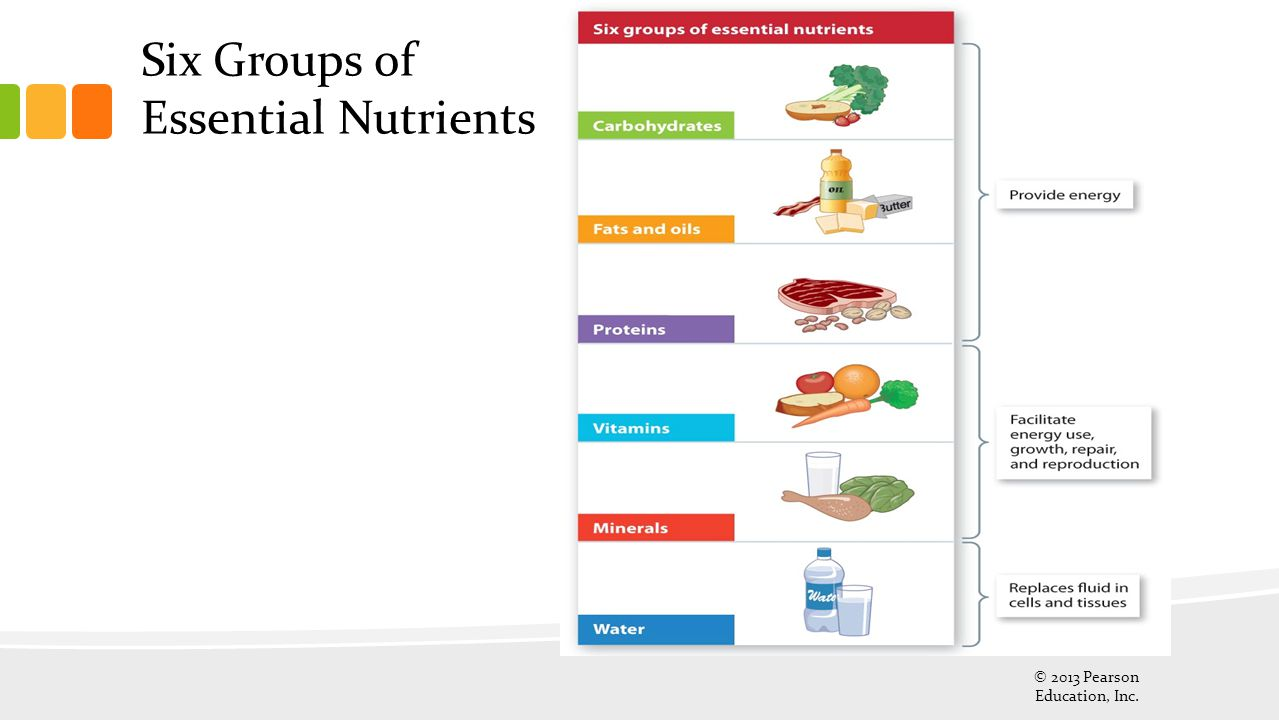 Six Groups of Essential Nutrients
