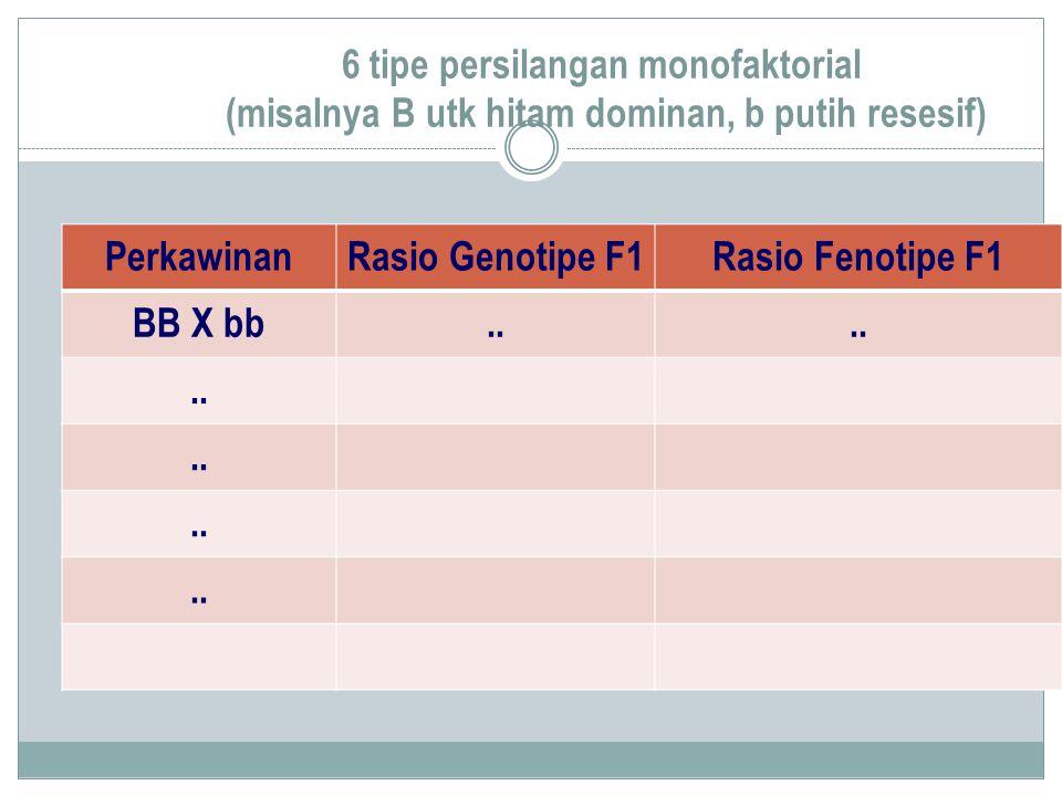 6 tipe persilangan monofaktorial (misalnya B utk hitam dominan, b putih resesif)