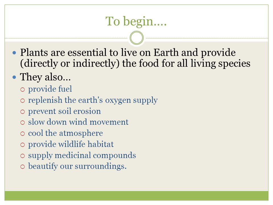 To begin…. Plants are essential to live on Earth and provide (directly or indirectly) the food for all living species.