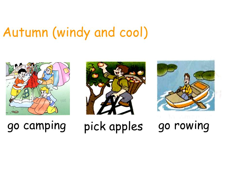 Autumn (windy and cool)