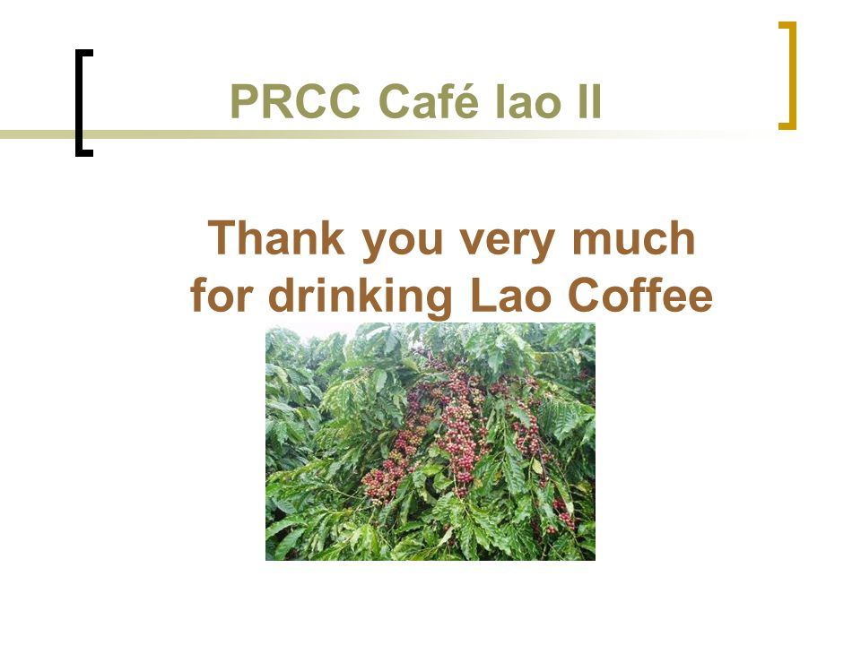 Thank you very much for drinking Lao Coffee