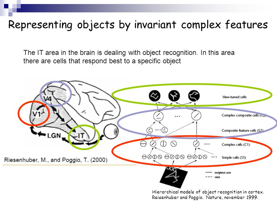 Representing objects by invariant complex features