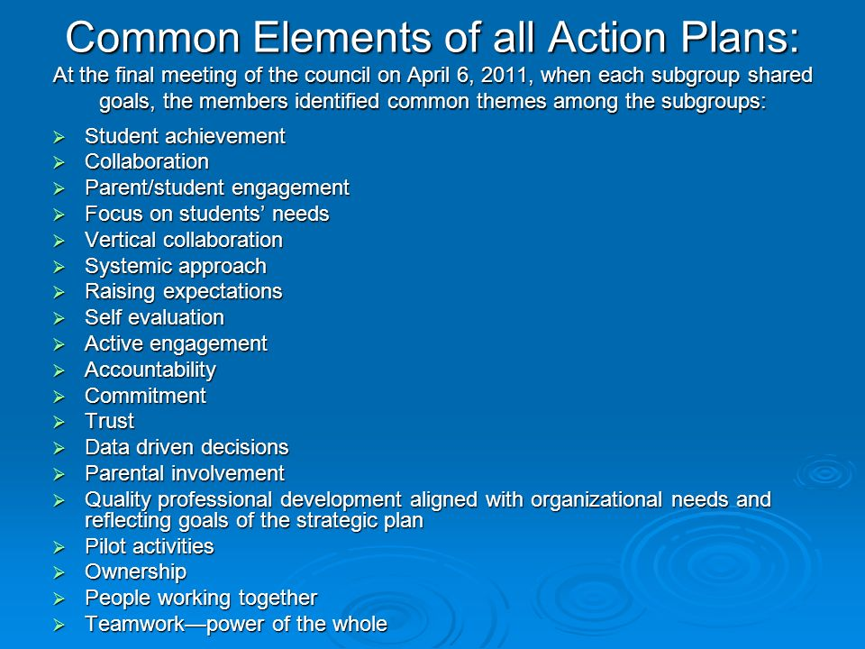 Common Elements of all Action Plans: At the final meeting of the council on April 6, 2011, when each subgroup shared goals, the members identified common themes among the subgroups: