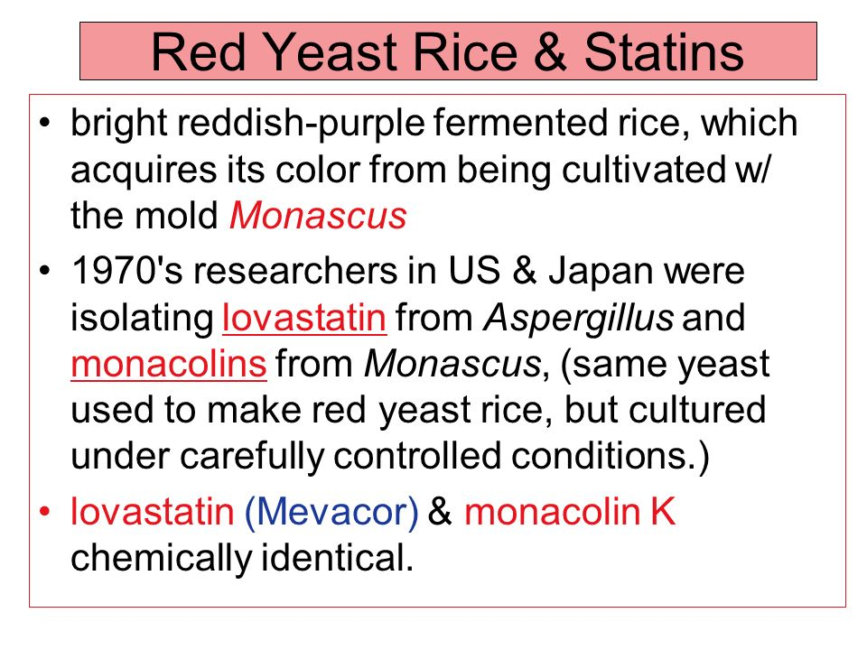 Red Yeast Rice & Statins