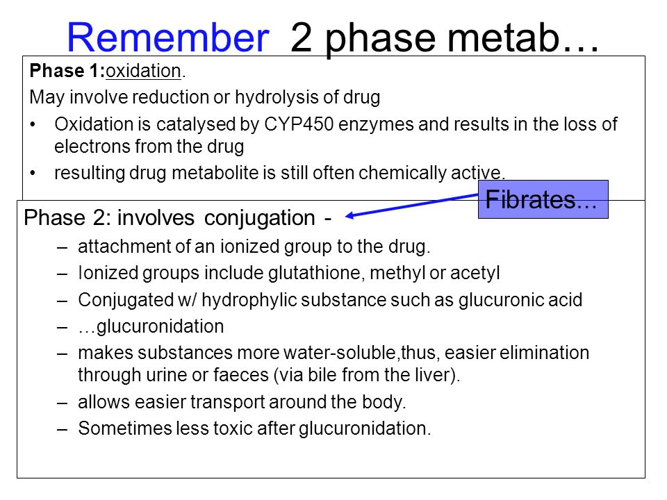 Remember 2 phase metab… Fibrates… Phase 2: involves conjugation -