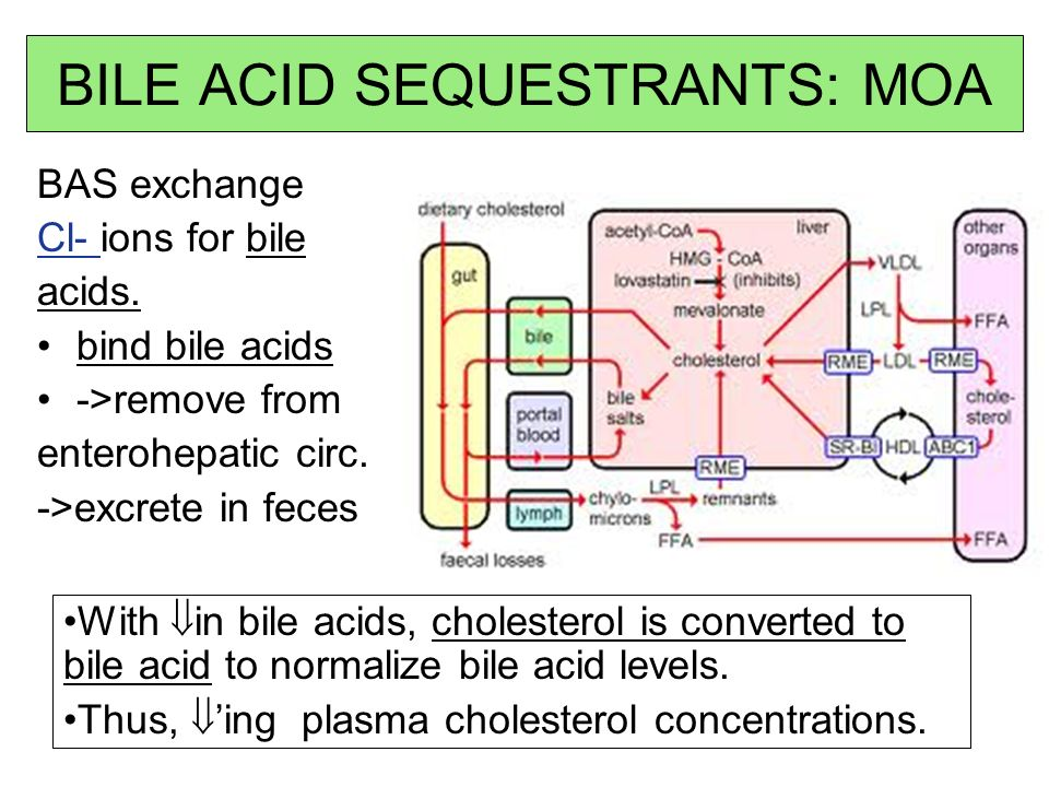 BILE ACID SEQUESTRANTS: MOA