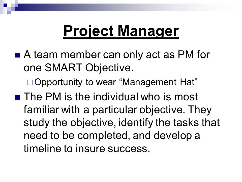 Project Manager A team member can only act as PM for one SMART Objective. Opportunity to wear Management Hat